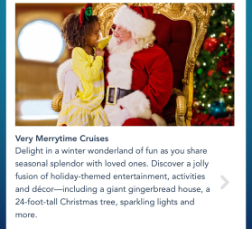 Disney's Christmas Cruise