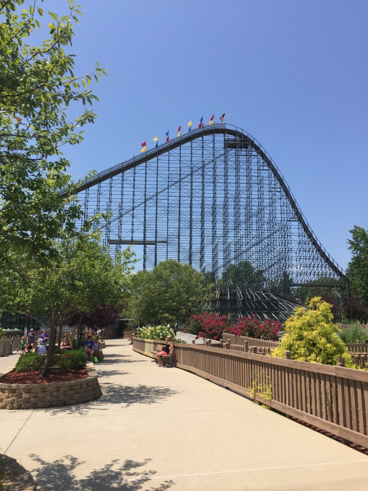 rollercoaster-twins-aaron-1